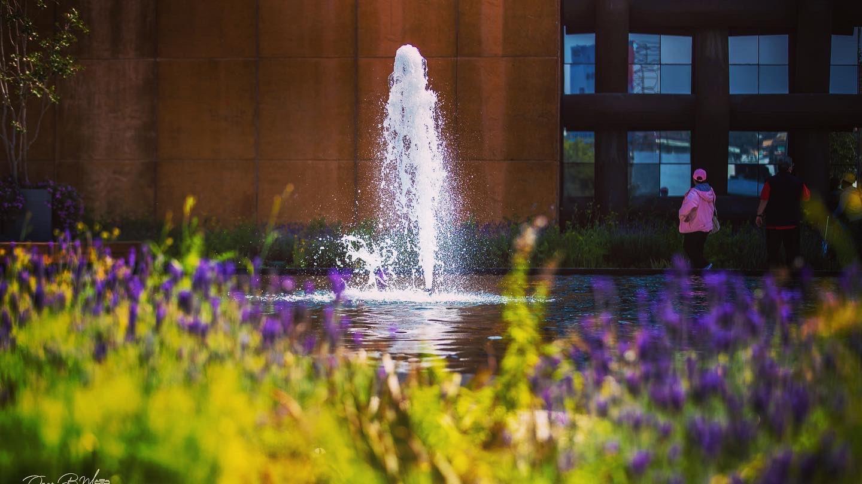Entre sus 40 mil metros cuadrados, la azotea verde más grande del mundo tiene jardines y fuentes.