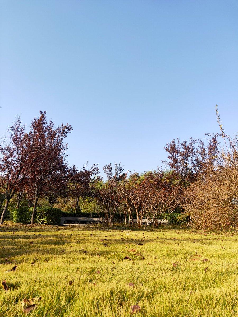 Feeling the sunshine be like. #SunnyDay #Sunday https://t.co/FtpToWscvp