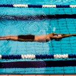 ✍️ | Namens de samenwerkende partijen in de zwembranche en NOC*NSF heeft de Stuurgroep Zwembranche afgelopen vrijdag een brief gestuurd naar minister van Ark (Medische Zorg en Sport).  👉https://t.co/T5PeDCuvIg