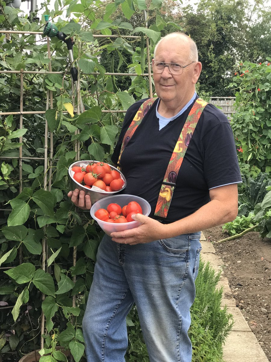 Just to cheer you up on a very wet Monday these are some tomatoes from last summer the variety are y ddraig goch fi they are beautifull cheers