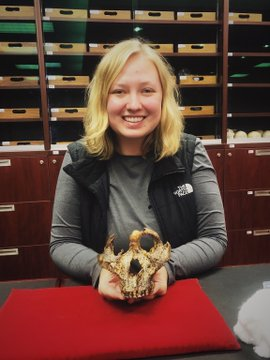 Skull of human ancestor found in South Africa EmZQRbuVkAkskFt?format=jpg&name=360x360