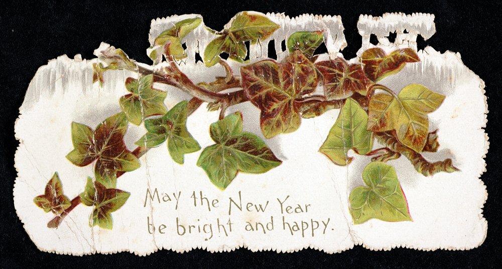 暦。クリスマスはいろいろな「三大」「三つ組」がつきものですが、植物でいえばヤドリギ、ヒイラギ、そしてこのアイヴィー。その常緑の生命力の強さで縁起がよいのであります。恋愛関係の花言葉では「死んでも離れない」とのこと。からみつくツタ類はゆるやかに動くトリフィドでありましょうか。