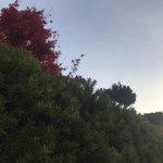 88tomokiのサムネイル画像