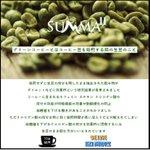 miya77872150のサムネイル画像