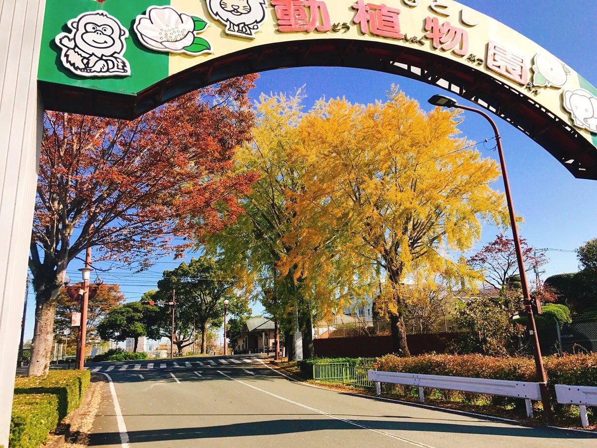 市 動 植物園 熊本