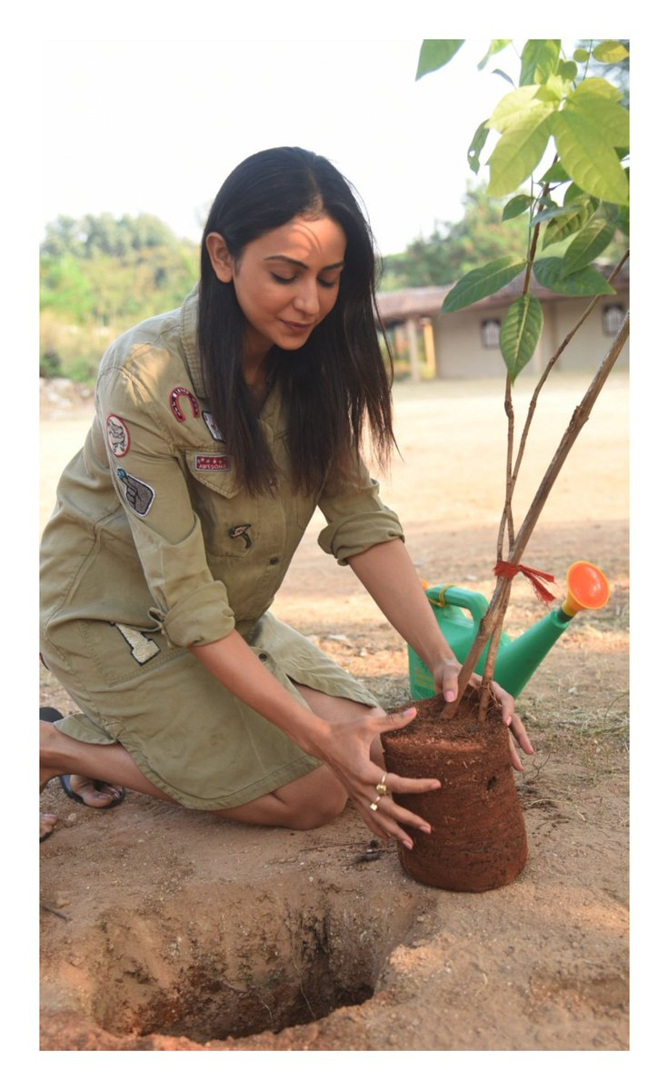 It's our responsibility to keep the planet green special thanks to @mpsantoshtrs for taking this initiative