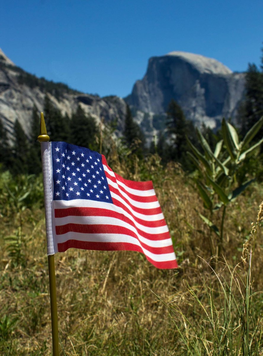 We honor all veterans on #VeteransDay and every day. We thank them for their service to our country, past and present.   Learn more at https://t.co/R75DzWoBiN  Image: @YosemiteNPS https://t.co/BMRQb04iBI