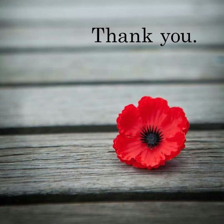 Thank you for your service 🙏🏻 #RemembranceDay
