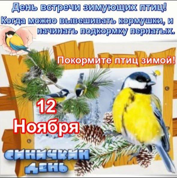 12 ноября Синичкин день
