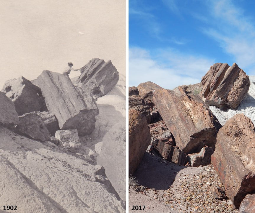 Compare a Jasper Forest image in 1902 and 2017. This one does illustrate the differences in camera formats over the last century. (hl) #TBT #ThrowbackThursday #history #FindYourPark #EncuentraTuParque #PetrifiedForest #NPS #nationalpark