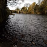 Image for the Tweet beginning: Ilkley Old Bridge and the