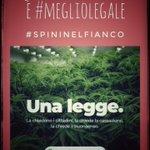 Image for the Tweet beginning: Quote parziali italiane: 42mila consumatori