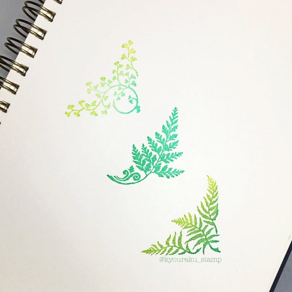 植物 と コケ シダ 植物