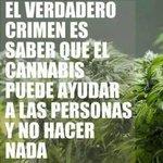 """Image for the Tweet beginning: """"La ilegalidad del #cannabis es"""