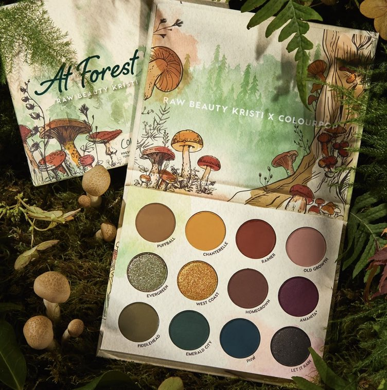 Hi friends! I have an extra @RawBeautyKristi X @ColourPopCo palette and both glosses coming my way and wanted to do a little Twitter giveaway! Retweet this and follow me for a chance to win! Ends 11/21 at 11:59 EST! Good luck 💞