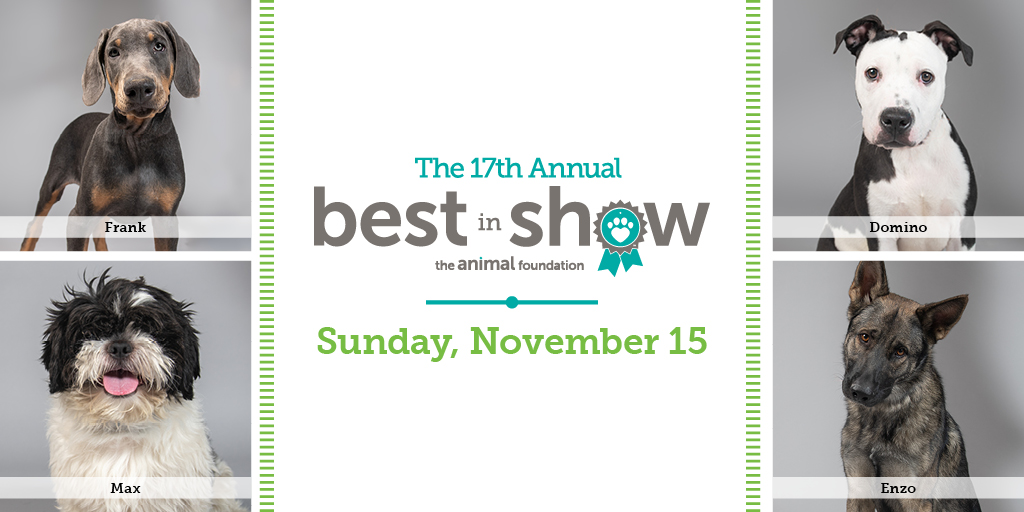 Support our four-legged friends in need of a home by virtually-attending @animalfndlv #BestInShow on Sun, Nov 15. Watch them crown a winner and bid on silent auction items. Details here: