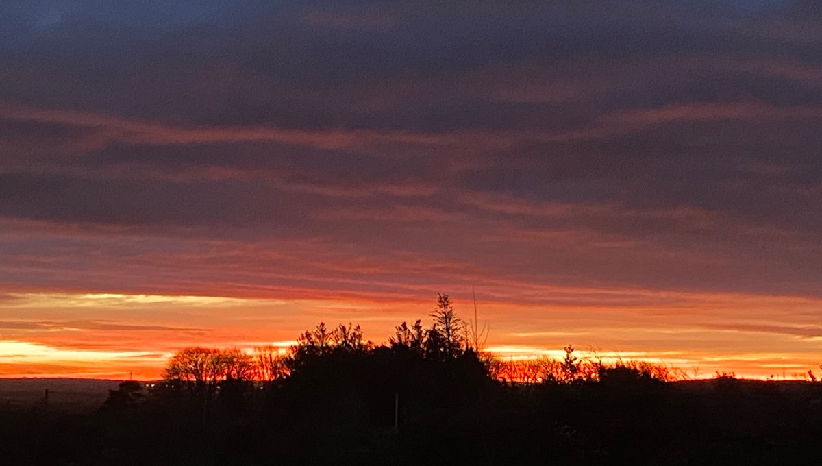 Beautiful skyline this morning, a silhouette of a Woodcock flew across landing a field away
