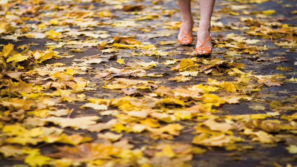 HOW TO PREPARE FOR AUTUMN AND WINTER  Keeping your floors clean is of course important from an esthetic point of view; people feel more at ease in a clean and tidy environment. But there are other reasons to take dirt seriously…https://t.co/ZP3k7NLIjM https://t.co/afwdpCmrgE