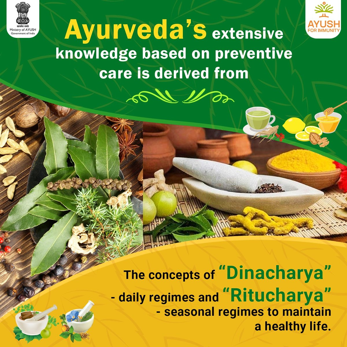 Enhancing #immunity plays an important role in maintaining optimum #health.   As per #Ayurveda- the science of life, it is important for the body to stay connected to the rhythms of nature.   While #Dinacharya is a daily routine designed to maintain and connect us to our