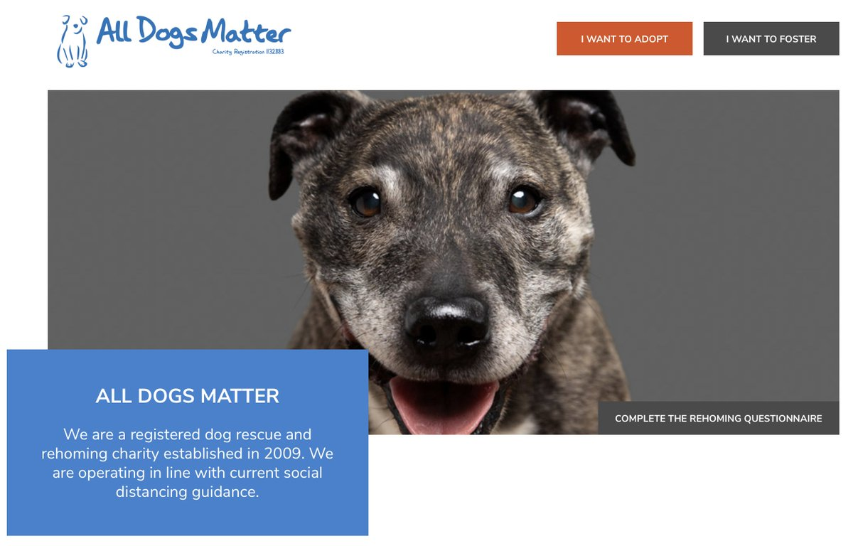 During @WestEndWoofsUK video @OfficialBPeters & I showed films from UK shelters that help re-home unwanted & abandoned dogs. Over the coming days I want to help those shelters further by encouraging you to visit their websites. Today is @AllDogsMatter on
