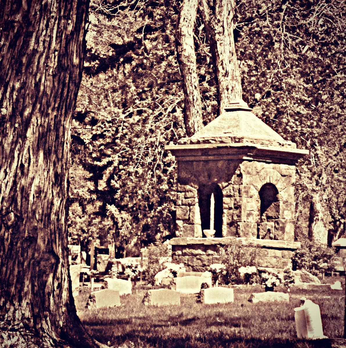 Lay me down in the ground deep down In my final bed Let me lie where the great peak rises Towering above my head. ~ Forest P. Porter  #cemetery #grave #poetry #poem #podcast #newepisode #newpodcast #podcasts #PodcastRecommendations #History #Colorado #ColoradoSprings https://t.co/l2Of2EvqNI