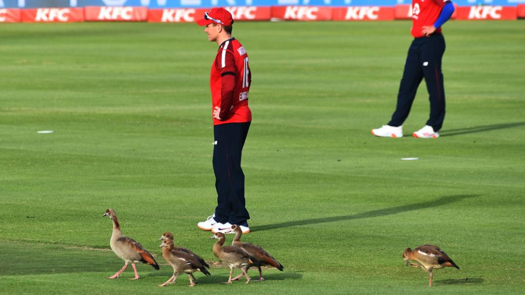 A lot of extra bodies on the field for Eoin Morgan's side today... 👀 🦆 🦆 🦆 🦆 🦆 #SAvENG