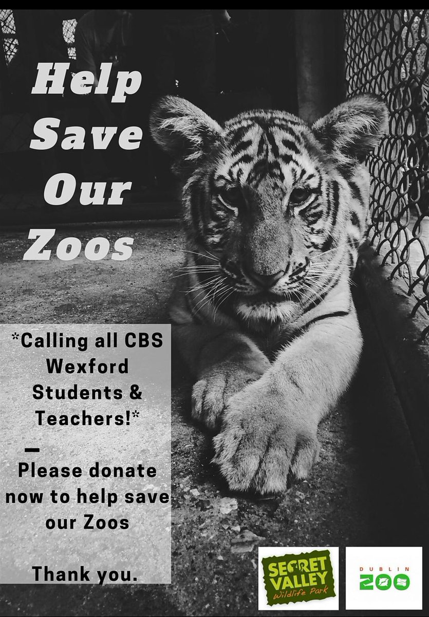 We challenge you, your school, your workplace to join the CBS community and donate to help save Dublin Zoo and Secret Valley. Both places are very close to the heart of the CBS, together we can make a difference! Big thank you to Ms Whelan for the lovely posters! https://t.co/dW82y9aBO9