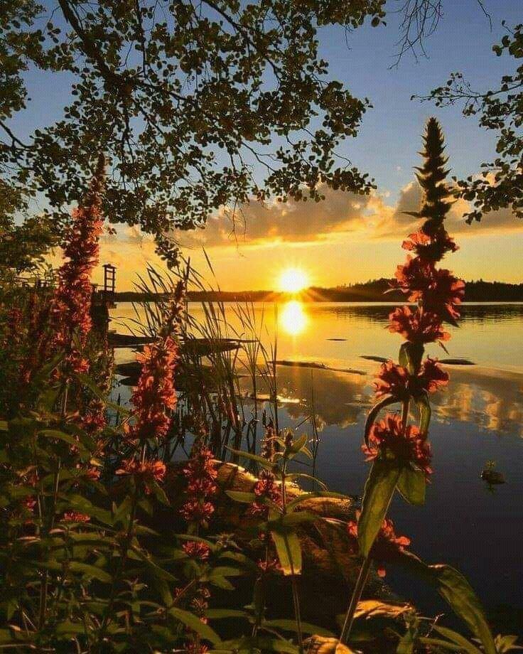 #NatureZen  #NaturePic  ItsABeautifulWorld🌐📷💥 :amazingplanet,fb https://t.co/FXklA80kNd