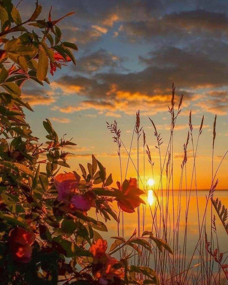 #NatureZen #NaturePic ItsABeautifulWorld 🌐📷💥fb:amazin🌐 https://t.co/PV8q6pMe95