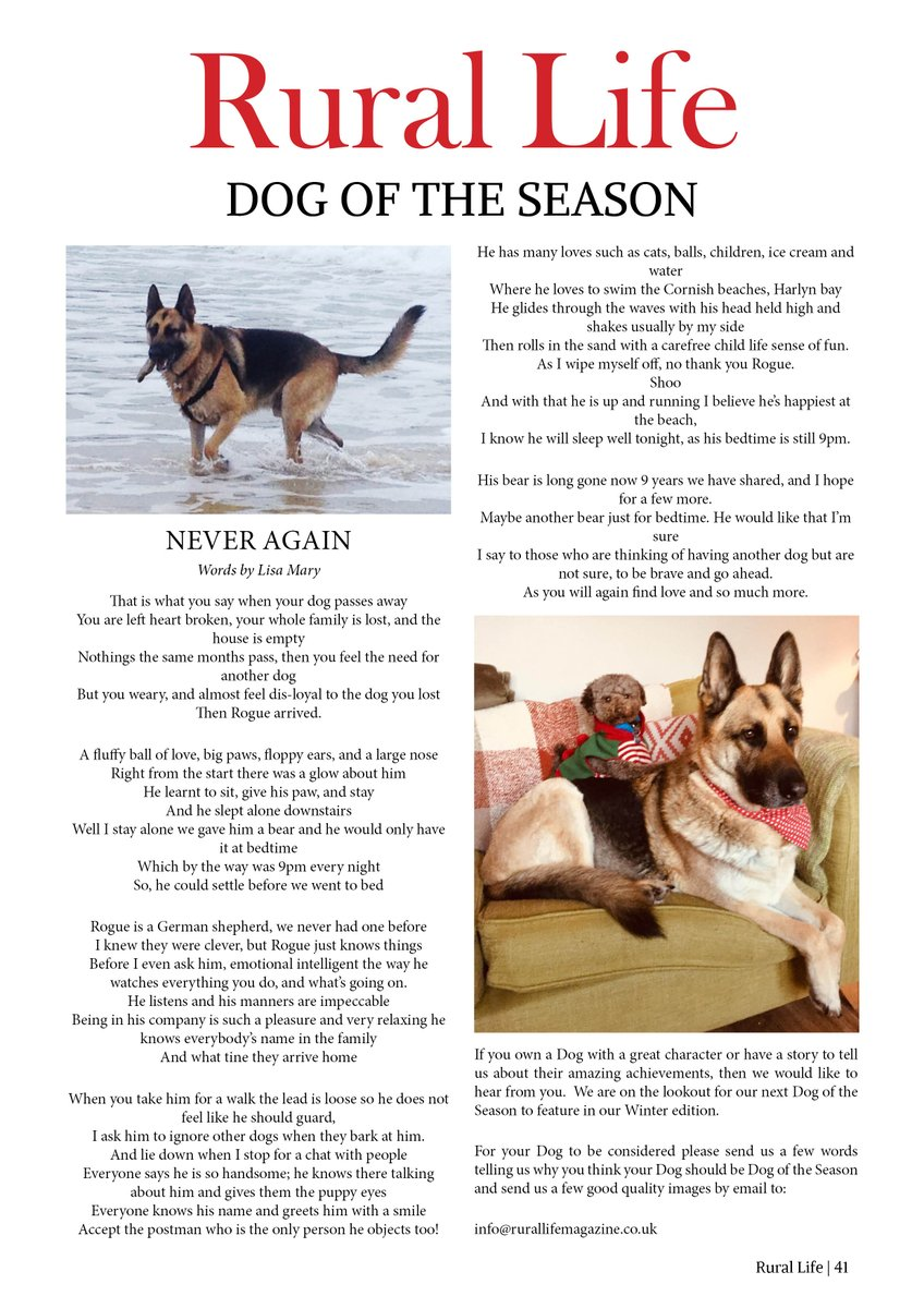 """Find out about Rouge, Rural Life's Dog of The Season or how your dog can be """"Dog of The Season"""" Read our #Autumn either issue Online for FREE: https://t.co/Iua8iqgd2Y on Readly: https://t.co/ijrre1JkmJ or in Print: https://t.co/5hP9swrjhd #RuralLife #Countryside #farmingtwitter https://t.co/DyBe6bbN6O"""