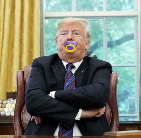 Our incredibly delicate and sensitive lame duck president, @realDonaldTrump, would like us to know that #DiaperDon is hurting his feelings.  An official statement will be issued after nap time.