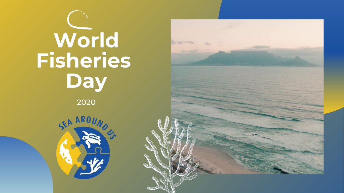 Check out the video we prepared for #WorldFisheriesDay (last week)