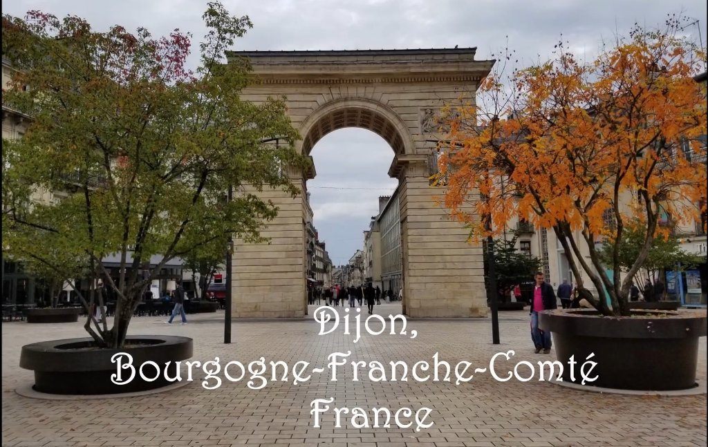 """#UCalgary International Video Contest update! We're very proud to congratulate our winner Valentina Fajardo! Her Video """"Dijon & France through my eyes"""" was based on her exchange @univbourgogne in Dijon, France! Congrats to Valentina & all our participants! https://t.co/W3ClKT6sjX https://t.co/ZOwFihhwkF"""