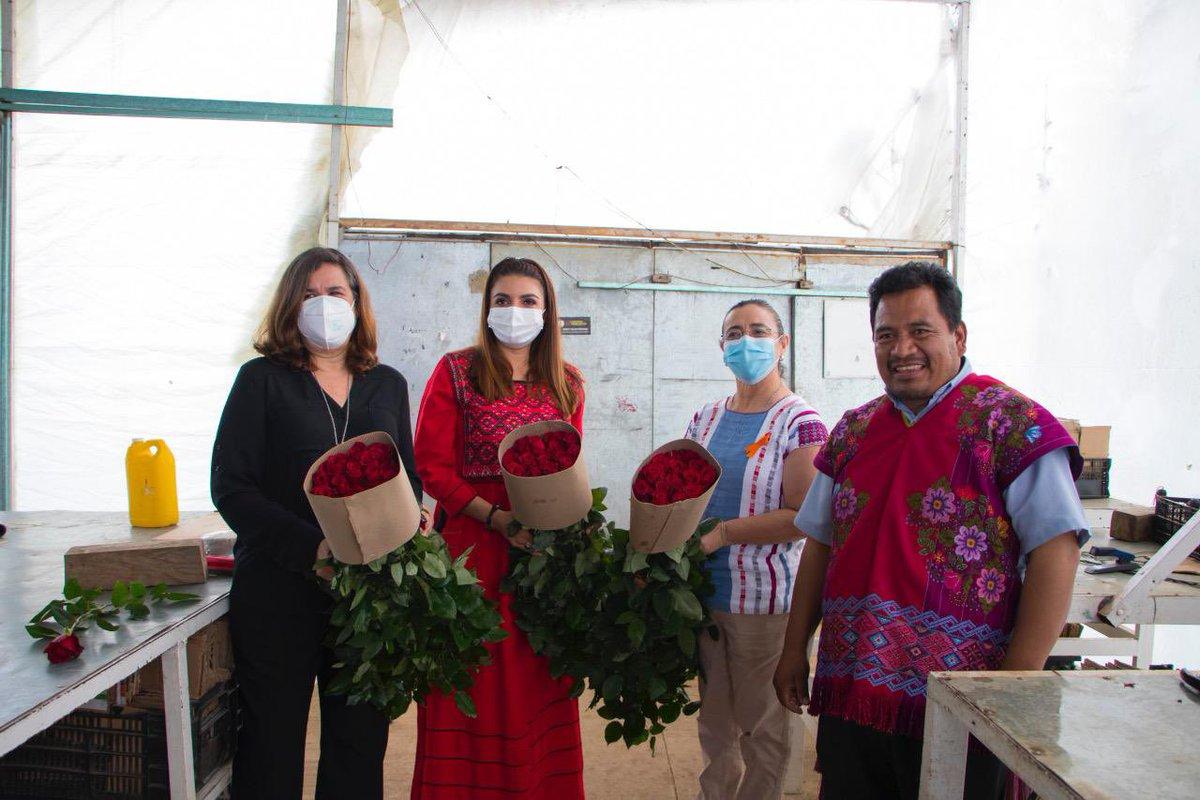 La titular de la #SAGyP, Zaynia Andrea Gil Vázquez, junto a la #FAO, #SADER, y #SEMAHN, encabezó el recorrido por invernaderos destinados a la floricultura en el municipio de #Zinacantán.   ¡Con el campo, #ChiapasEsMásFuerte!  👉 https://t.co/Pykyorjcvf https://t.co/x8OP3Q3da4
