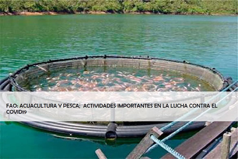 """#AGINFORMACION... """"LA #ALIMENTACIÓNSALUDABLE ES UNO DE LOS #PILARES DEL #PROGRAMAESTRATÉGICO DE LA #FAO EN #AMÉRICALATINA Y EL #CARIBE..."""" https://t.co/cSQ6XIOZ7M  @maxi_pelaezp @Mx_Diputados @senadomexicano @lopezobrador_ @GobiernoMX https://t.co/0ldPZy6PJ7"""
