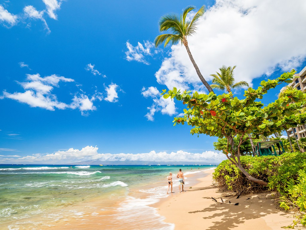 The beach was once a haven for Maui royalty due to its beautiful caramel-colored sand and gentle waves.  Read the full article: Top 6 Beaches in Hawaii ▸ https://t.co/Bdjx4nQ8vn   #beachvacation #hawaii #oahu #Kauai #Lanai #Maui #Vacations #Travel #Holidays #Trips #Top6Beaches https://t.co/5bZutr69aL