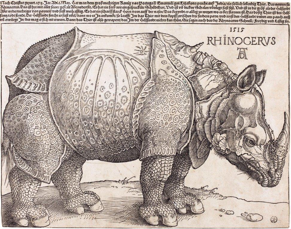 @BrindusaB1 #Dürer (1515) versus #Dalí  Rhinoceros vestido con puntillas (1956) Marbella #Spain