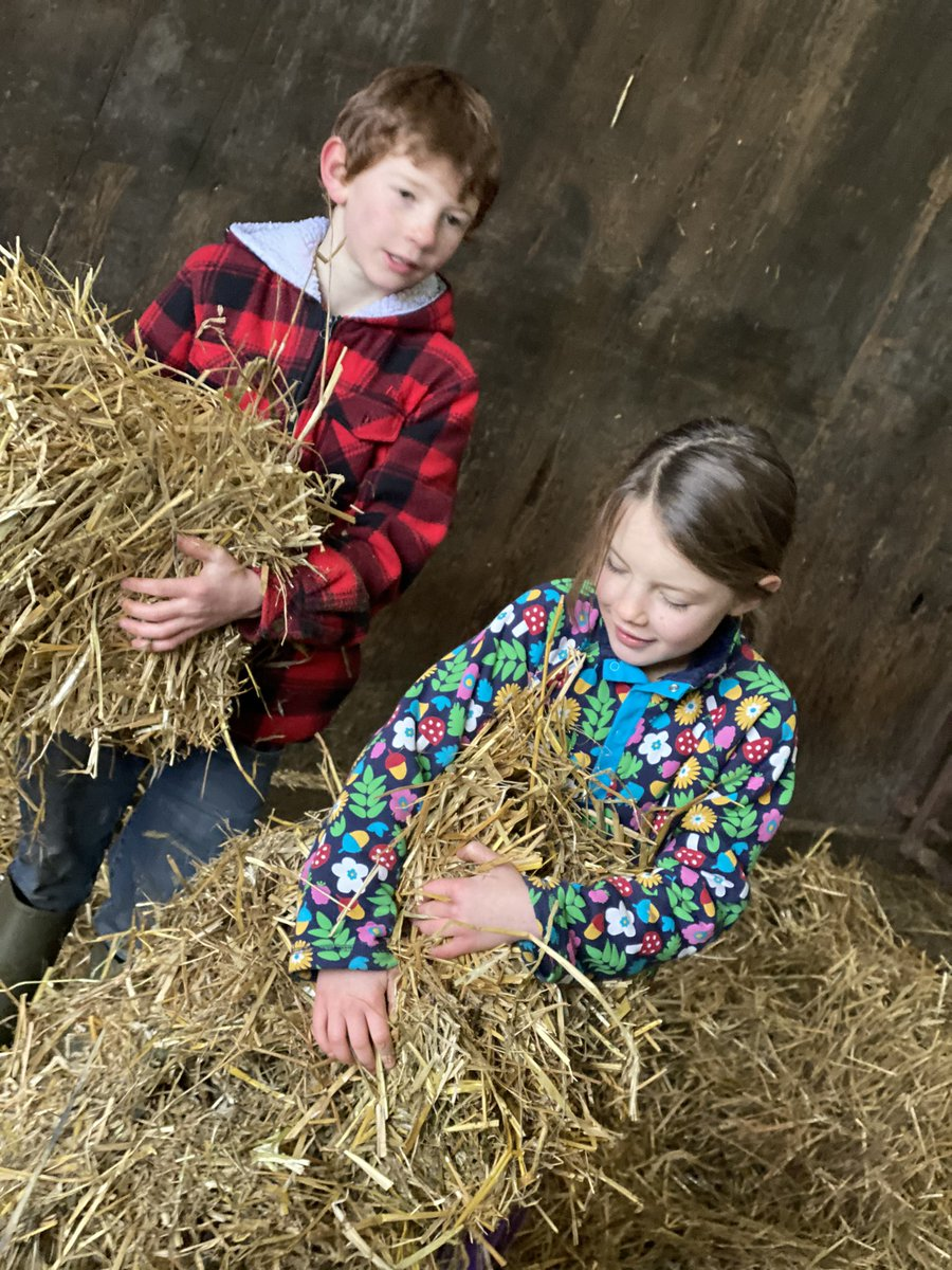 Up & about, there's no time to lose, 🏃♀️  Sheep, chickens, horses & a few coo's. 🐑🐑🐔🐔🐴🐴🐮🐮 With the animals bedded, fed & now cudding,  There's a treat in store, chocolate rice pudding. 🥣  #yorkshire #weekend #children #farm #food #Foodie #pudding