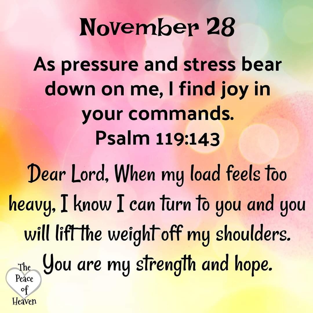 ☀️☕🍁Good Morning Brothers/Sisters As pressure and stress bear down on me, I find joy in your commands. -Psalm 119:143 Have A Wonderful Blessed Day! Remember #GodIsGood #JesusLovesYou #JesusIsComing #JesusSaves #VerseOfTheDay #SaturdayMotivation #LoveOverHate #SaturdayThoughts