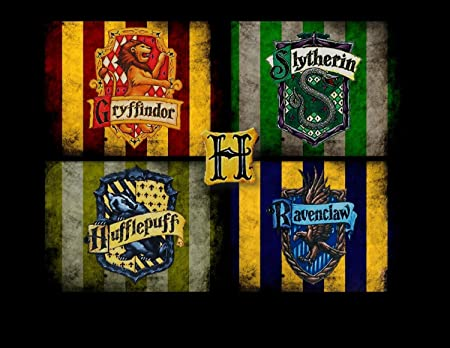 If the EU would be at Hogwarts, who would be definitely in one of the 4th Houses #challengeEu #MFF #RuleOfLaw #HarryPotter #Budget2021 #NextGenerationEU https://t.co/1JGb0r68Cj