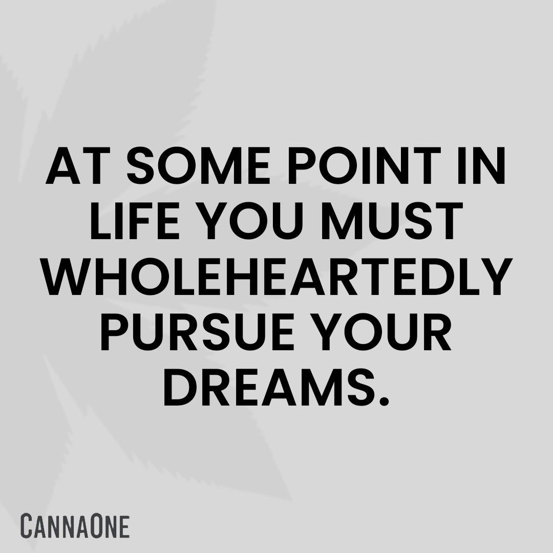 #CannaCosmo #CannaGrowHarvest #CannaVest #CannabisMeetsHealthcare #WomenGrowStrong #FoodBeverageCannavation #CannaOne #CBD #HEMP #THC #CannabisBusiness #Cannabis #Cultivation #Growers #Processors #Dispensary #CannabisLegalization