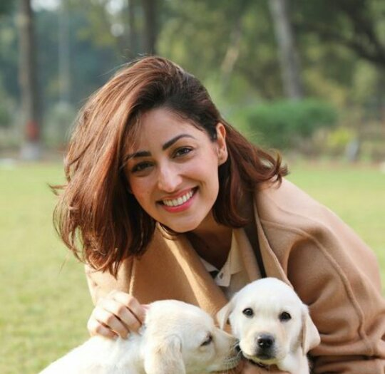 @yamigautam Once again Happy birthday beautiful soul @yamigautam .I always adore u so much.u r blessing for me.U r stress buster for me.u r my sunshine. U really r an absolutely incredible individual.Kindest,coolest and innocent soul u r my queen.ilysm❤ #HappyBirthdayYamiGautam #YamiGautam