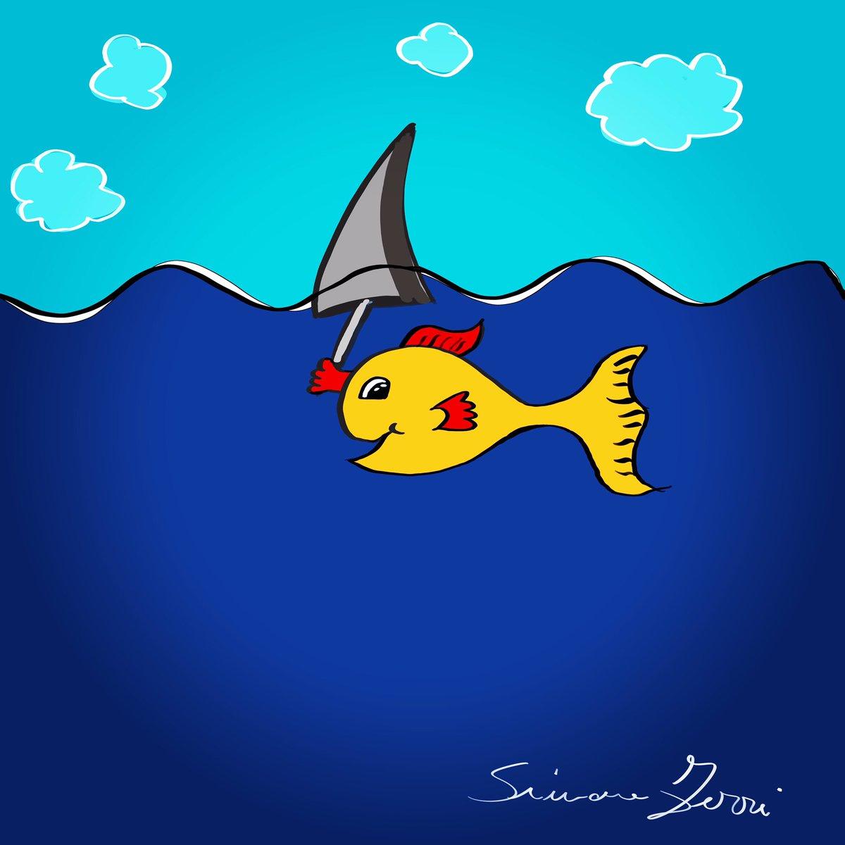 #loveandpaltrythings #fish #shark #sea #blue https://t.co/jsvsNJ41fH