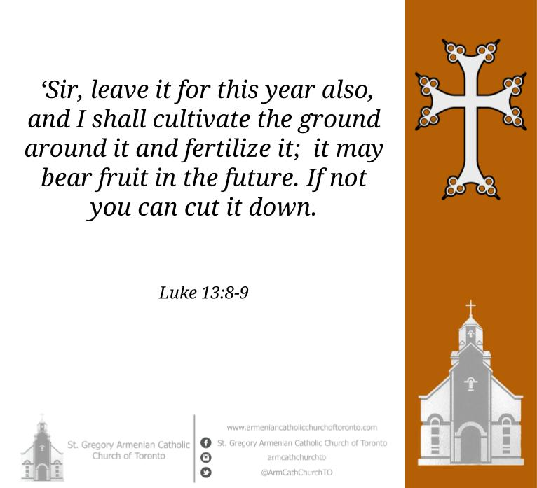 Holy #Gospel reading for Sunday, November 29,2020. (Luke 13:1-9)  A Call to repentance. This Sunday is called the third Sunday of #Advent #GospelOfTheDay