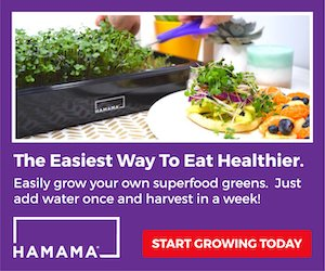 #SmallBusinessSaturday Grow your own #microgreens with Hamama. Get 20% off with code BFCM20 this weekend  #affiliate