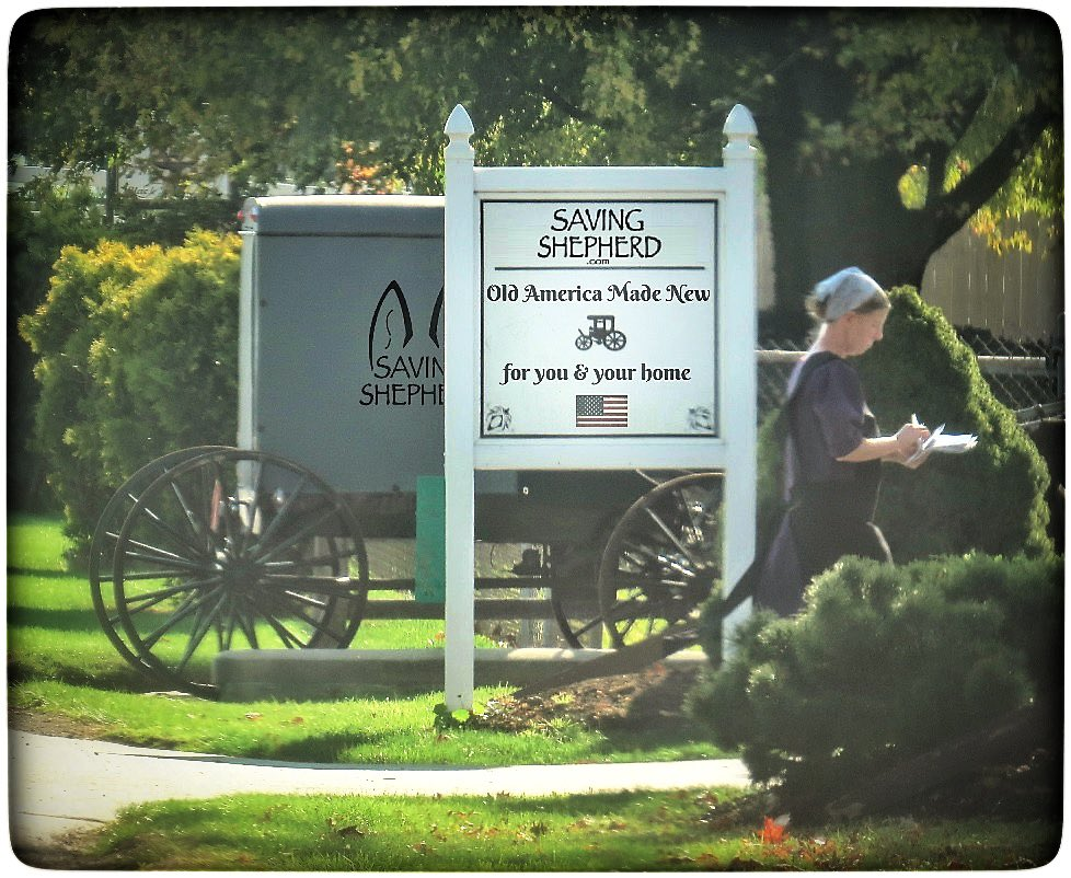 """Today's Truth """"Kindness when given away, keeps coming back."""" #Amish #proverb ❤️ #kindness #love #quoteoftheday #photooftheday #bekind #karma #quote #friends #family #peace #quotes #savingshepherd #good #life #photography #photo #picoftheday #picture #america #travel #pic #usa 🇺🇸"""