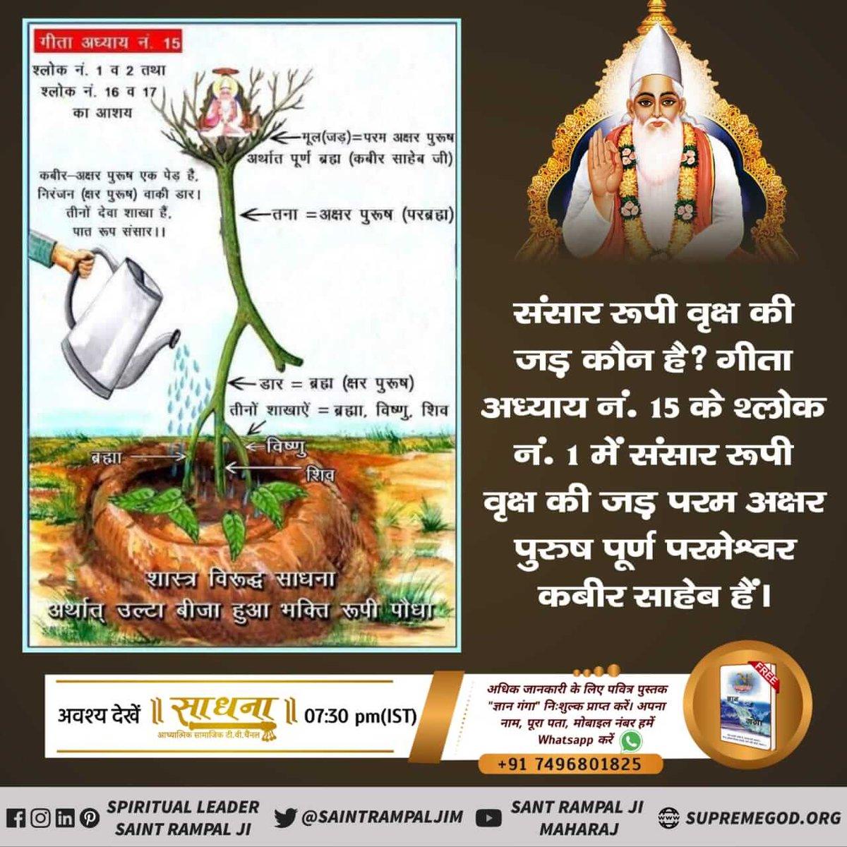 #HappinessMantra #WhoCreatedNature God Kabir Kabir Sahib, the Supreme God, created all beings.  Created the whole universe.  God Kabir is the Master of SATLOK https://t.co/Qi6mdPOcqV