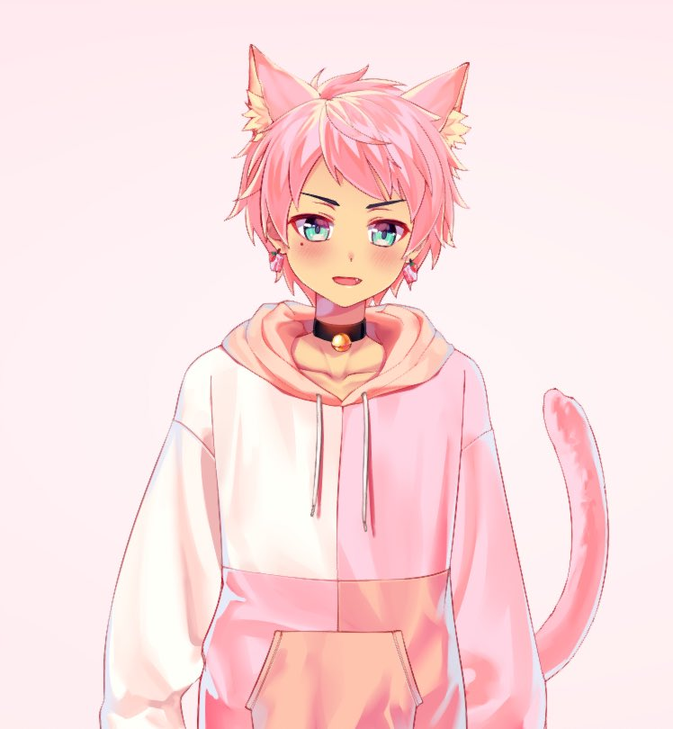 whats this #catboyrevolution that im hearing about