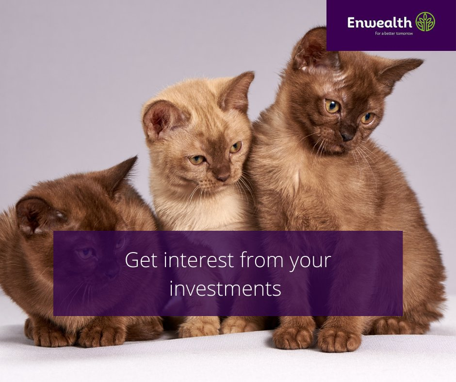 Our Income Drawdown Fund, you get to draw out a monthly/quarterly/bi-annual/annual income while still enjoying interest from investments on the residual amount!  DM or call us on +256 0702736237/0786891300 or email us at info@enwealth.co.ug #ForABetterTomorrow #retirementplanning https://t.co/sv19DI2d5W