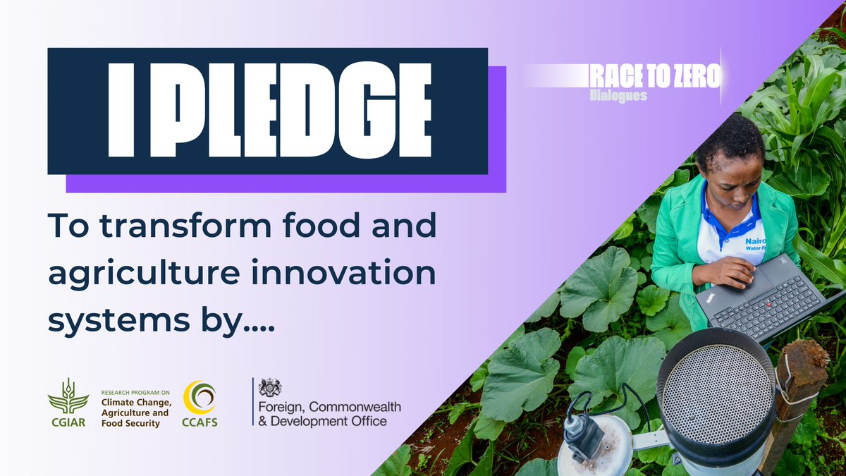 Today CCAFS pledges to #RaceToZero   Pledge your support by sharing this post, adding your #1 priority for #COP26 which supports regenerative & resilient #foodsystems   With huge thanks to everyone who participated in our #NewEra4Food dialogue today